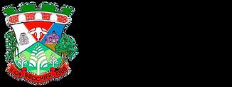 LogoBrasao_Preto.png