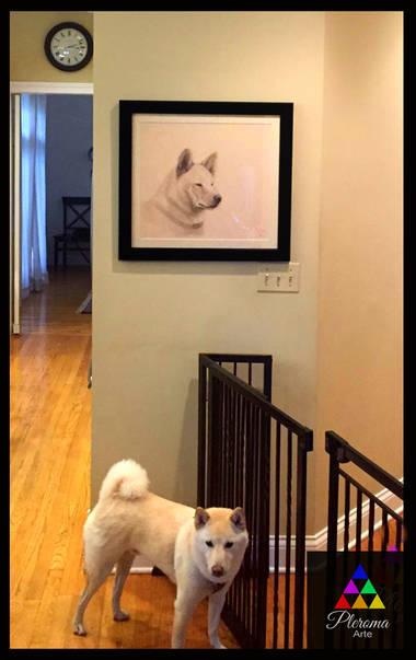 venta de cuadros de animales.jpg