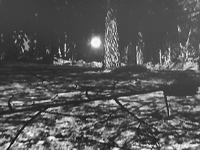 New Witness to the Rendlesham UFO Comes Forward with New Photos