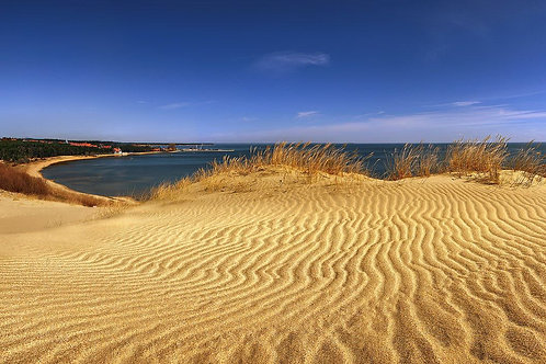 UP TO THE DUNES!