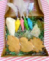 Spring_Season_Cookie_Decorating_Kit.JPG