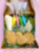 Spring_Season_Cookie_Decorating_Kit_COTS