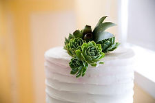 elaines cakes 1.jpg