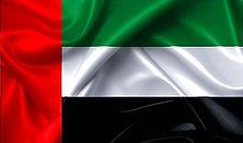 Dubai%20flag_edited.jpg