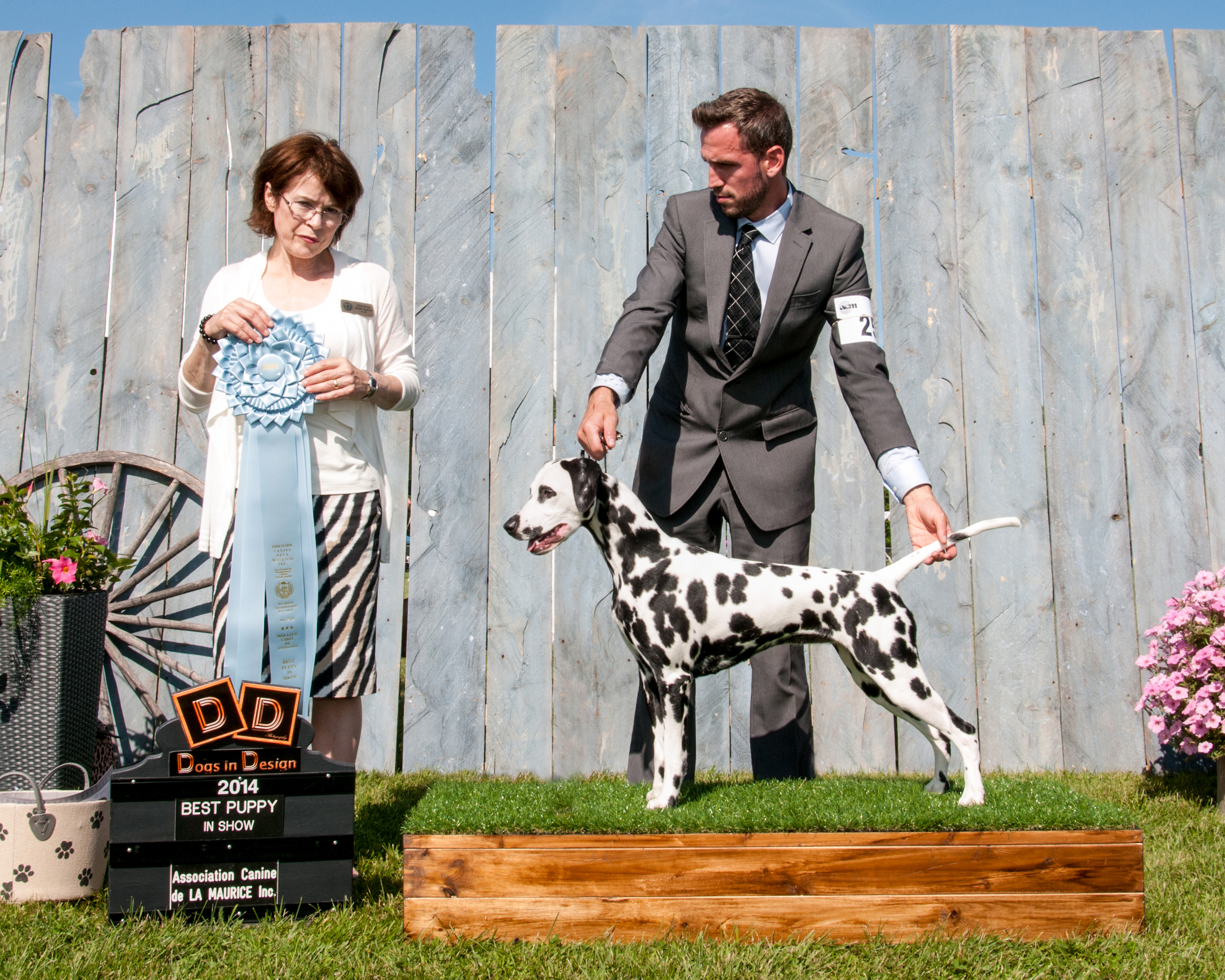 Best Puppy in Show - New Champion