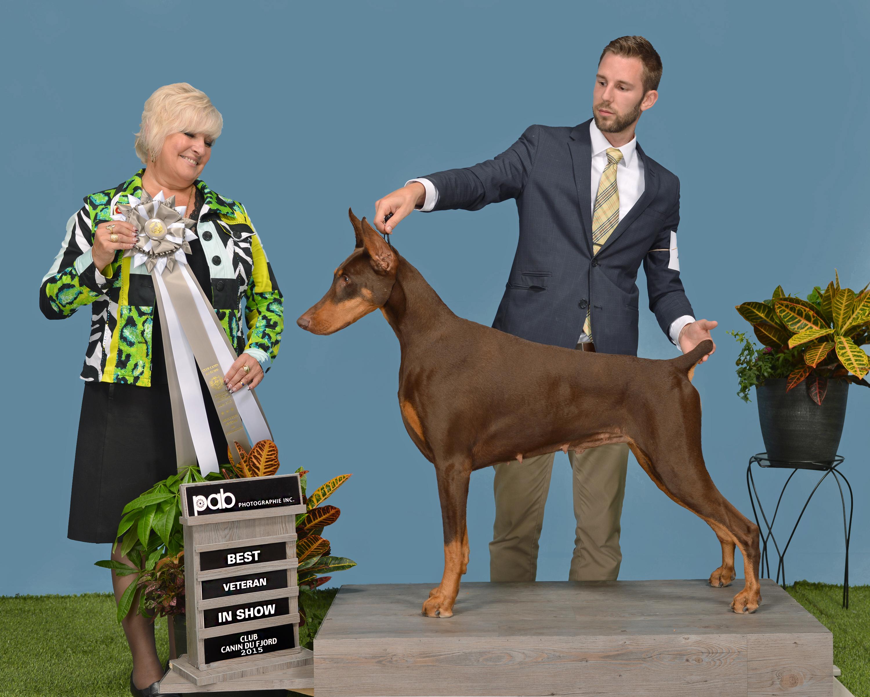 Cleo - Lee Anne Bateman Best Veteran