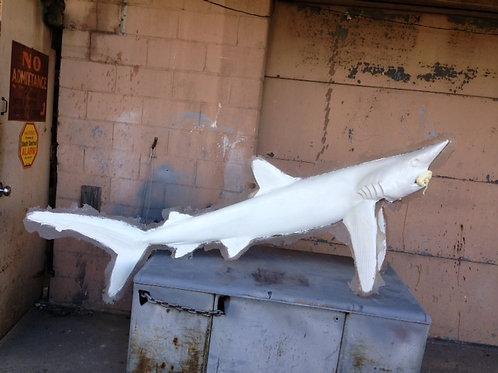 Shark, Blue