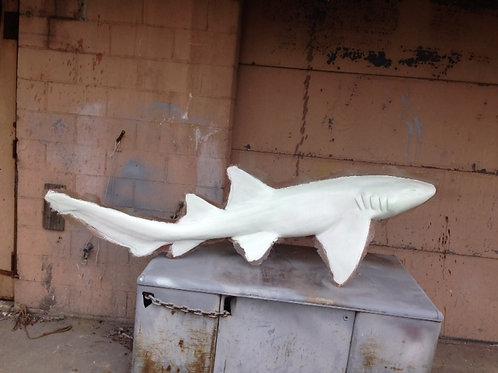 Shark, Nurse