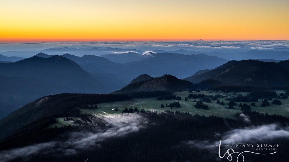 Mt. Rainier Valley