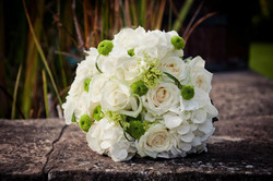 'Avalanche' Roses and Hydrangeas