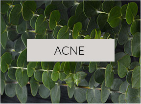 Acne Skin Type
