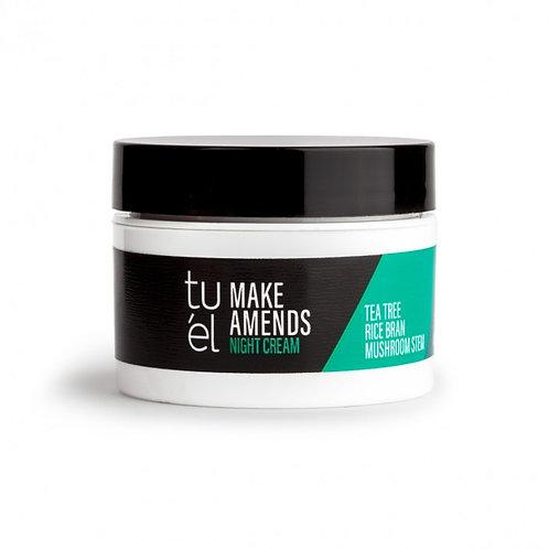 Make Amends Cream - Acne Skin