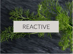 Reactive Skin Type