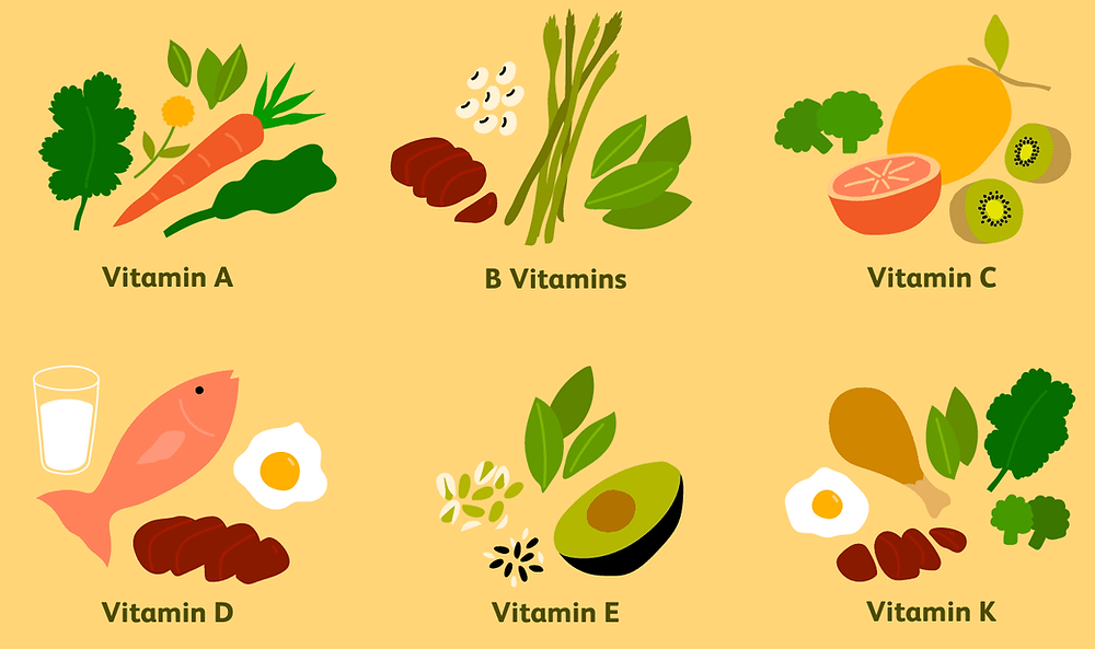 vitaminler, mikro besin ögeleri