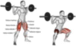 squat, squat hangi hareketleri çalıştırır, squat hangi kasları çalıştırır
