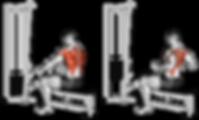 cable row, cable row yaparken yapılan hatalar, cable row yaparken yapılan yanlışlar, cable row illüstrasyon, cable row nasıl yapılır, cable row nedir, cable row png, cable row model üstünde, model üstünde cable row, cable row nasıl yapılır, cable row doğru form nedir, cable row faydalı mı, cable row neden yapılmalı, cable row hangi kas gruplarını çalıştırır, cable row çeşitleri nelerdir,  cable row neden önemlidir? Nasıl doğru cable row yapılır? cable row zararlı mı? Kimler cable row yapabilir ? cable row faydalı mıdır ? cable row faydaları,  cable row resmi, cable row fotoğrafı, cable row yapan adam, cable row yapan fitness modeli, cable row fitness, kalça çalıştıran hareketler, cable row kalça yapar mı? En iyi kalça egzersizleri, en iyi kalça hareketleri, sık yapılan cable row hataları, en doğru cable row formu, en doğru cable row nasıl yapılır