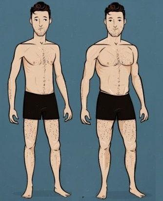 kilo alma rehberi, kilo almak, bulk dönemi, kilo alan adam, kas yapmak, sağlıklı kilo almak, kaslanmak, kas kütlesini arttırmak, bulk dönemi
