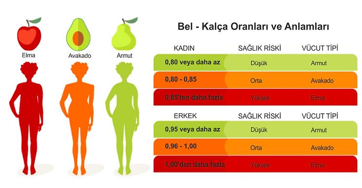 bel kalça oranı ve anlamları, armut tip vücut, elma tipi vücut, avakado tipi vücut, bel kalça oranına göre vücut tipleri, bel kalça oranı hesaplama, bel kalça oranı nasıl hesaplanır, bel kalça oranı, bel kalça oranu hesaplama, bel kalça oranı, belin kalçaya oranı kaç olmalı