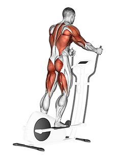 kardiyo rehberi, kardiyo nasıl yapılır, kardiyo hareketleri, hııt kardiyo, lıss kardiyo, en iyi yağ yakma egzersizleri, kardiyo yararları, kardiyo nasıl yapılır