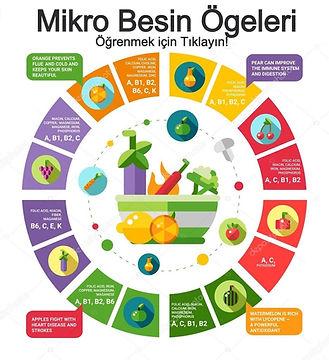 mikro besin ögeleri nelerdir, mikro besinler hakkında bilgi, mikro besin ögeleri, mikro besin ögeleri yararları, mikro besin ögeleri görevleri, mikro besinler neden önemlidir, mikro besin ögeleri hakkında bilgi