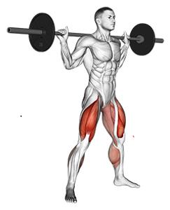 bacak kası anatomisi, bacak kası rehberi, en iyi bacak hareketleri, bacak nasıl çalıştırılır, bacak kası anatomisi, bacak kasları için dikkat edilecek noktalar, bacak kası için en iyi hareketler, en iyi bacak egzersizleri, bacak kaslarımı nasıl büyütebilirim, quadriceps, hamstring, calf, leg anatmy, bacak kasları