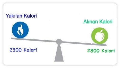kalori fazlalığı oluşturma, kilo almak için ne kadar kalori almalıyım, kilo almak için kalori miktarı, kalori fazlalığı oluşturma, kalori fazlalığı