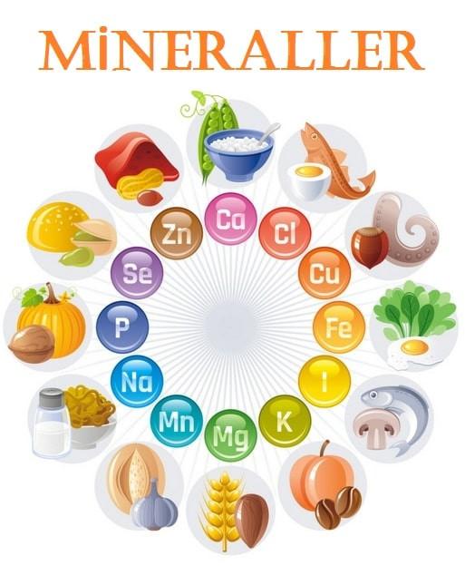 mineraller mikro besin ögelerinden mineraller
