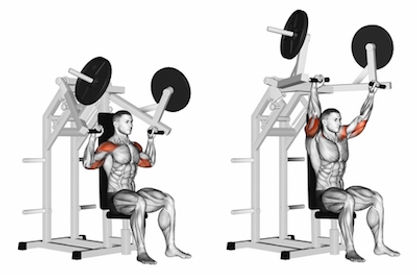 shoulder press, shoulder press machine, machine shoulder press, en iyi omuz egzersizleri, omuz kası nasıl çalıştırılır