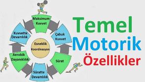 Temel Motorik Özellikler Nelerdir ?