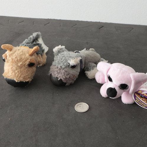 3 petits toutous chiens