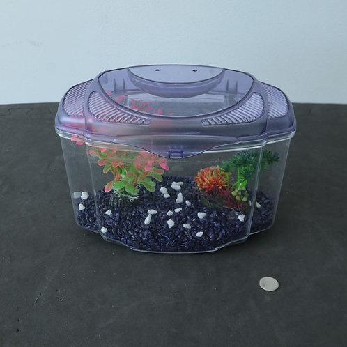 Aquarium (avec accessoires)
