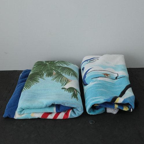 2 Serviettes de plage