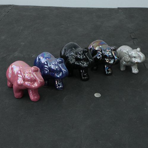 5 éléphants