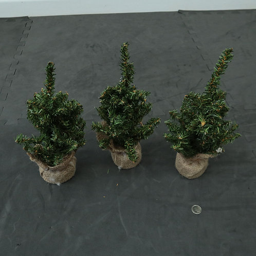 3 petits sapins de Noël