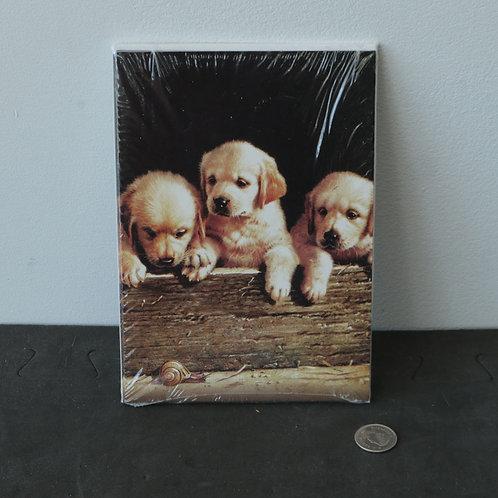 5 cartes de souhaits avec enveloppes