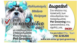 Pet Grooming Δωρεάν!