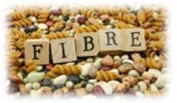 FIBRES2.jpg