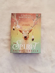 The spirit animal oracle cards help you move beyond the obstacles of your perceived limitations.