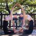 新加坡减肥塑形,瑜伽,肚皮舞,芭蕾形体,中国舞等你来!预约免费试课whatsapp 96652368