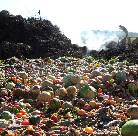 HOW TO REDUCE, REUSE, AND RECYCLE FRUIT WASTE