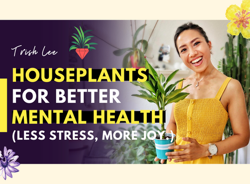 8 Amazing Ways Houseplants Reduced My Anxiety And Enhanced My Mental Health