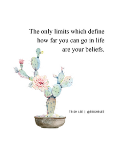 the only limits which define how far you can go in life are your beliefs