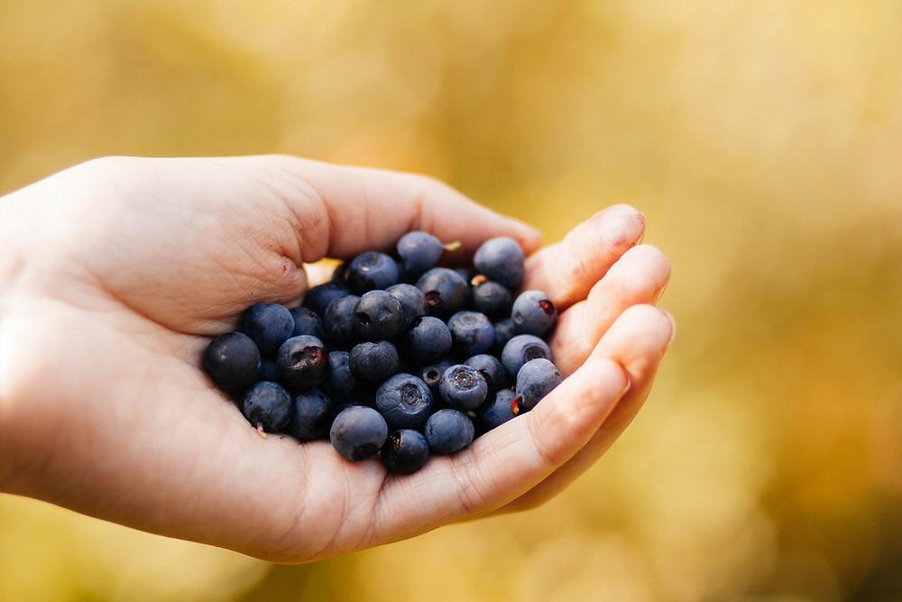 Blueberries for Brain Health.