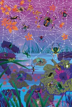8-araignees