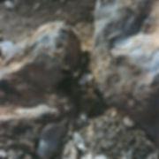 Sholamit3049-R1-07-8.JPG