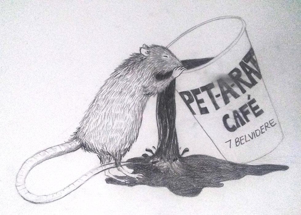 pet a rat2.jpg