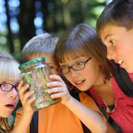 kids-camp.jpg