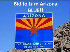 Turn Arizona Blue!  - Auction