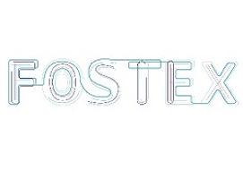 FOSTEX Extension of deadline member external committee EU