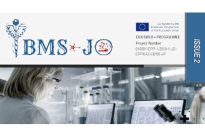 The 2nd newsletter for the iBMS-JO project is out!